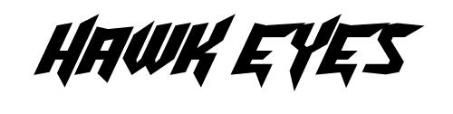 hawkeyes-2013-logo