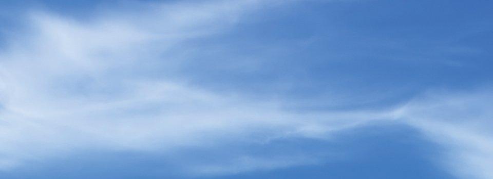 silent bird scaring kites from portek
