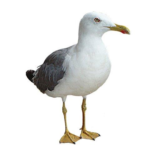 agricultural bird scarers portek