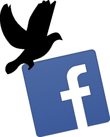 Portek Facebook Link
